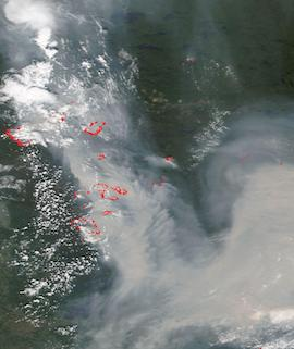 Fires in Manitoba and Ontario, Canada on 11 July 2021 (NOAA-20/VIIRS) - Feature Grid