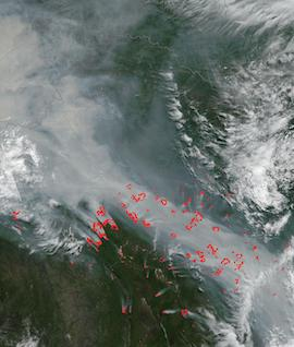 Fires in Siberia on 18 July 2021 (Suomi NPP/VIIRS) - Feature Grid