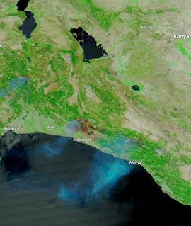 Fires in Turkey on 2 August 2021 (MODIS/Aqua) - Feature Grid