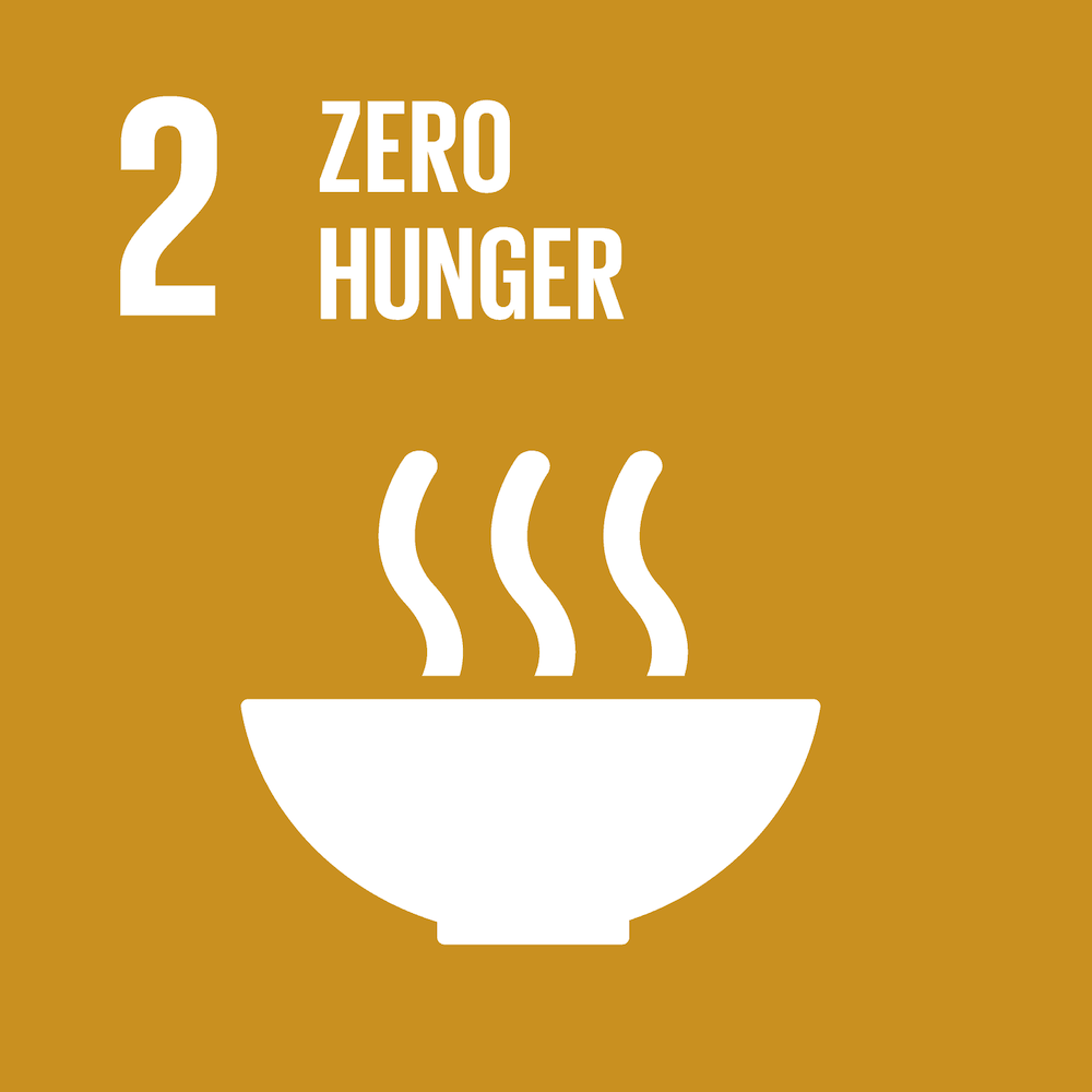 SDG 2: Zero Hunger Icon