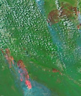 Fires in Bolivia on 22 August 2021 (NOAA-20/VIIRS) - Feature Grid