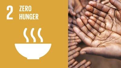 Ending hunger image