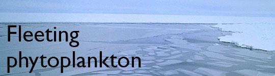 Fleeting phytoplankton - SOP 2012