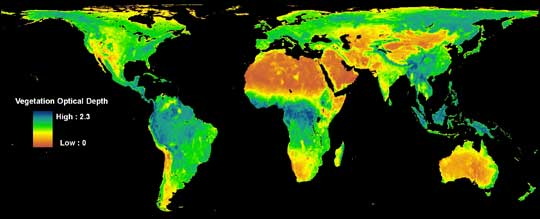 Data image showing the density of trees and plants across the globe
