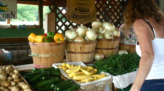 Photograph of a woman shopping at a vegetable market.