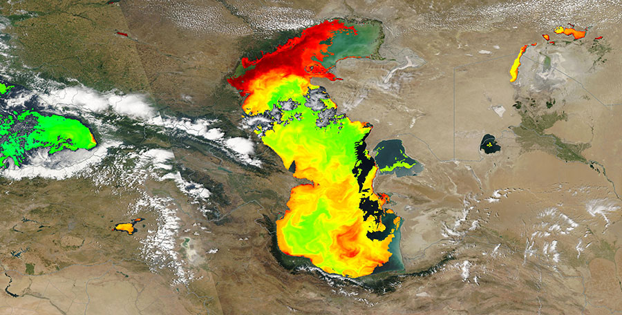 Chlorophyll-a concentration in the Caspian Sea