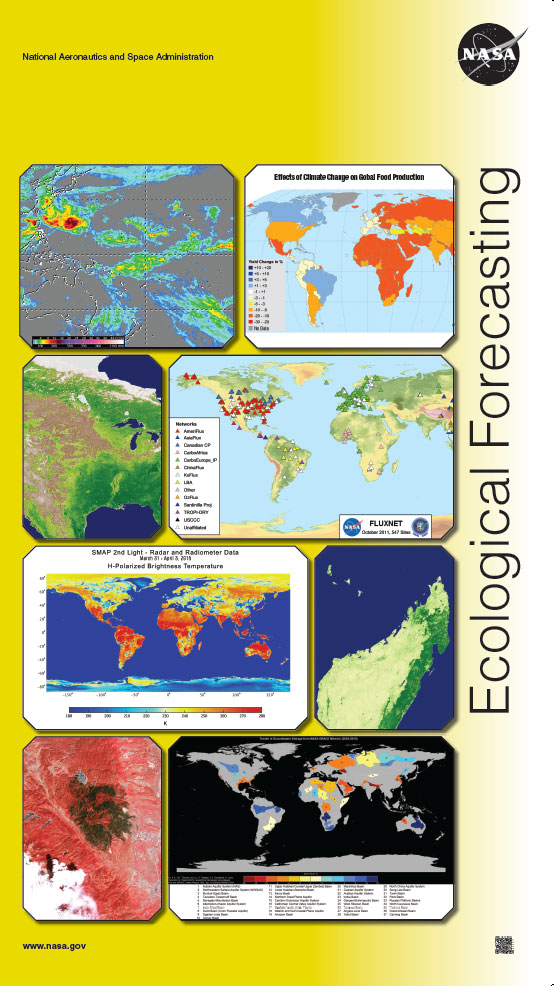John - Jones --- Ecological - Forecasting - Final - 4 - Print Web