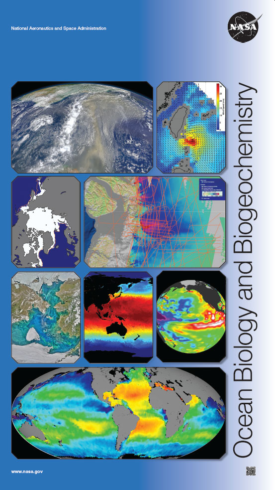 John - Jones --- Ocean - Biology - Final - 4 - Print