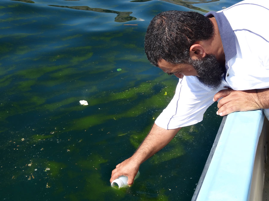 Photograph of a researcher gathering a sample of plankton-filled ocean water
