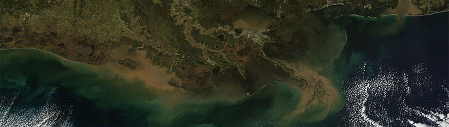 New Orleans and the Mississippi River Delta - feature grid