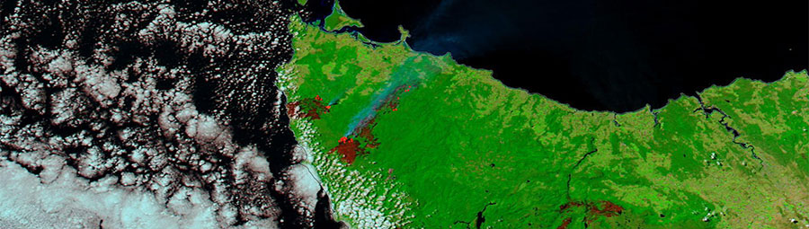 Bushfires in Tasmania - feature grid