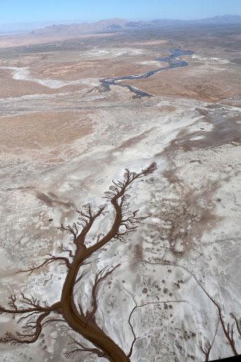 Photograph of the Colorado River Delta and the Gulf of California