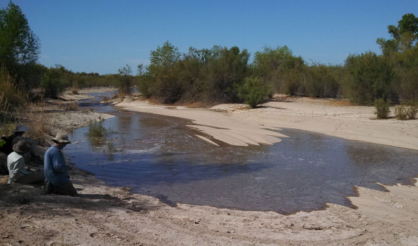 Photograph of scientists tracking the return of the Colorado River