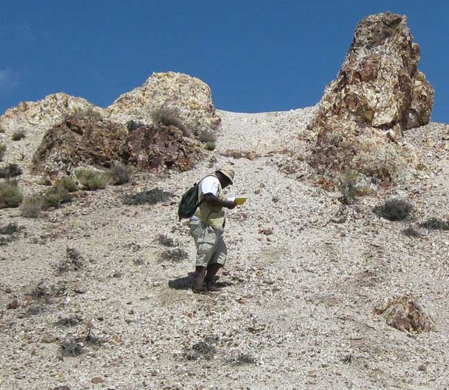 Dr. Bernard Hubbard conducting fieldwork in Goldfield, NV, in 2009 to provide ground truth for mineral maps created using data collected by the Advanced Spaceborne Thermal Emission and Reflection Radiometer (ASTER) instrument on NASA's Terra Earth observing satellite.