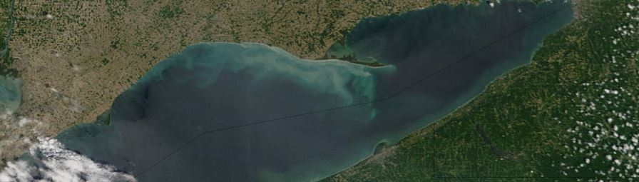 Phytoplankton bloom in Lake Erie - feature page