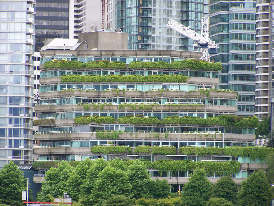 Photograph of vegetation-covered green roofs in Vancouver, Canada