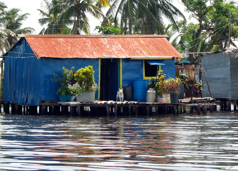 Photograph of a palafito, or stilt house built on Lake Maracaibo in Venezuela
