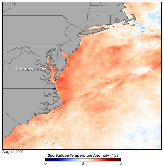 MODIS SST anomaly image