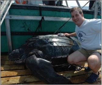 leatherback tracking