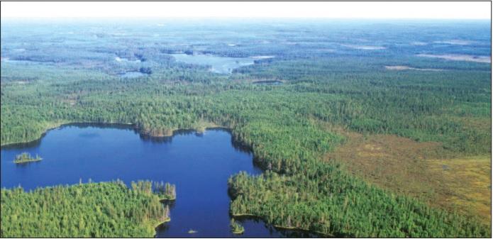 boreal forest Karelia