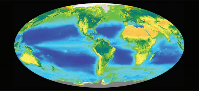 SeaWiFS phytoplankton