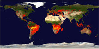 FIRMS Global Fire Maps image