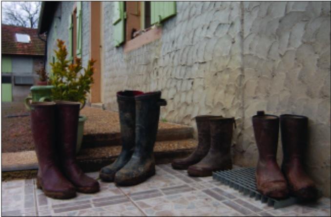 Burgundy farm boots