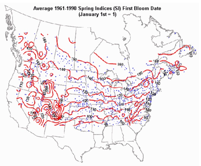 Average Spring Indices