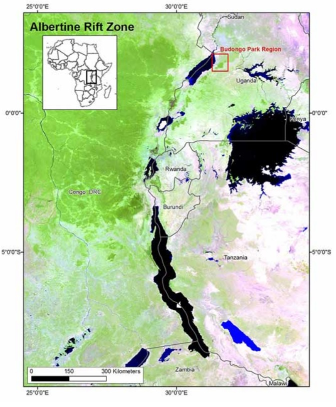 MODIS Africa Rift Zone