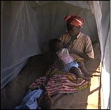 Zambia bed net