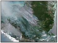 Yucatan Peninsula wildfires