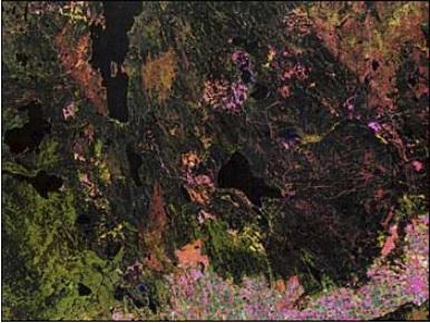 Landsat Prince Albert