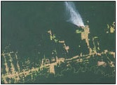 MISR deforestation Rio Branco