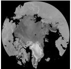 QuikSCAT Arctic map