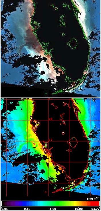 SeaWiFS Florida coast red tide