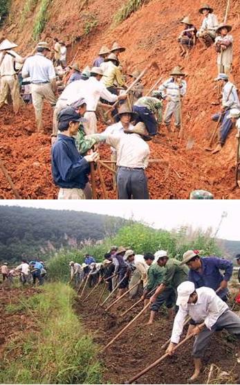 Tai Lue farmers