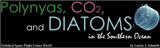 Polynyas, CO2, and Diatoms in the Southern Ocean