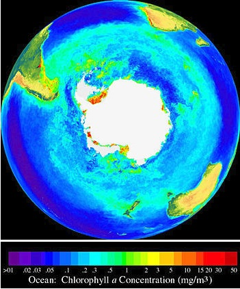 SeaWiFS Southern Hemisphere