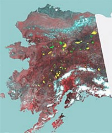 Alaska fire scars IGBP