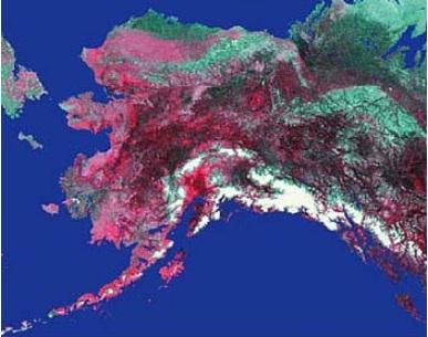 AVHRR Alaska image