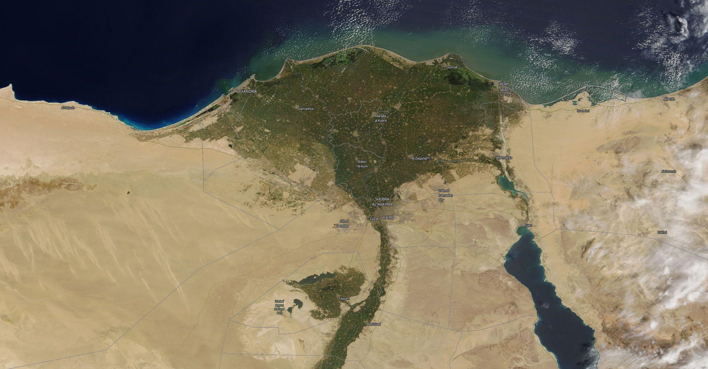 Nile Delta Large